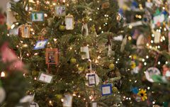 Festival of Trees Comes Of Age