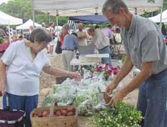 farmers-markets-beaufort4