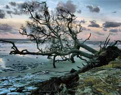 photo-seas-beach-intermediate