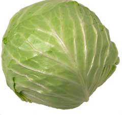 garden-cabbage-beaufort