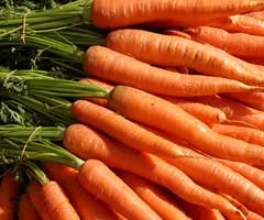 garden-carrots-lowcountry
