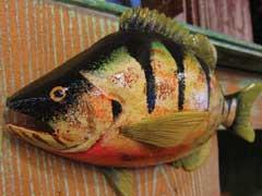 artisans-center-fish
