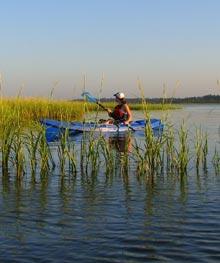 palm-key-susan-kayak