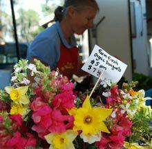 tourist-bluffton-farmers-market