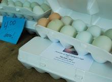 habersham-farmers-market-eggs