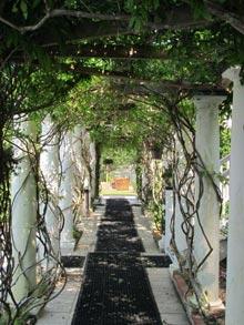 garden-davenport-pergola