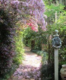 Garden A Day 2011