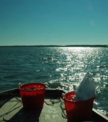 watermen-baskets-green-shell