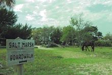 cumberland-horse-boardwalk