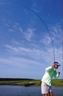 Fishing-blue-sky