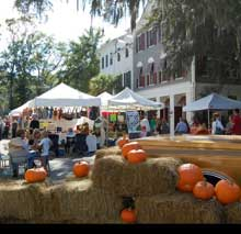 Celebrate Fall at Harvest Festival