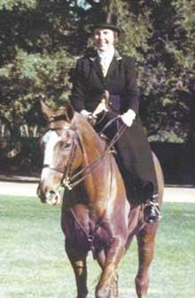 Madeleine-horse