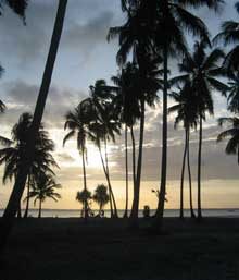 The Outsider Abroad: Zanzibar