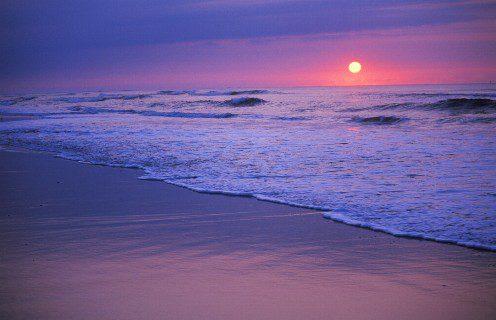 The Billion Dollar Coastline – Part 4