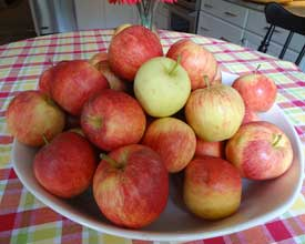 Appealing Autumn Apples