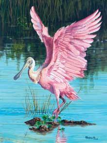 nature-Roseate-Spoonbill