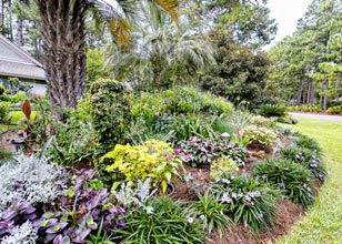 27th Annual All Saints Garden Tour