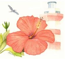 Watercolor-island-treasures