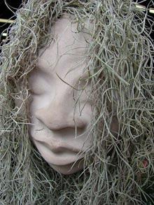 Spanish Moss in My Pina Colada