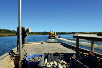 oysters-skiffs