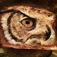 Mark-owl-face