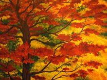 close-fall-color