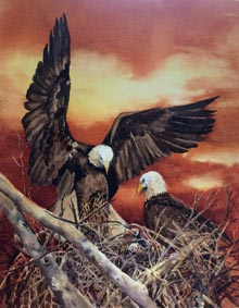 SOBA-Eagles-Nest-3-by-Pat-Wilund
