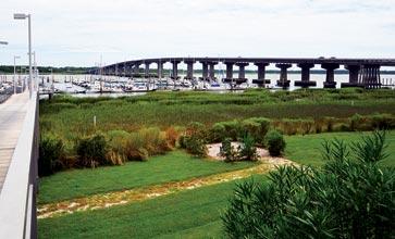 View-with-Bridge