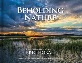 Beholding-Nature-Cover
