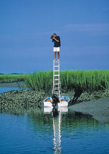 beholding-Eric-Horan-on-Ladder