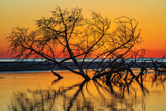 beholding-South-Beach-Sunrise-at-Ossabaw-GA