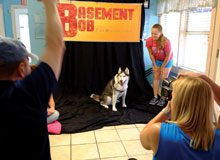 Basement Bob Goes to the Dogs