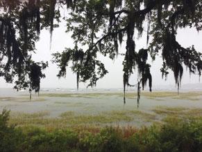 Hurricane-Post-Storm-High-Water
