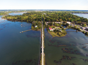 Spanish Moss Trail Aerial