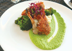 Anchorage-Lemon--Thyme-Brined-Chicken-Breast-w-Demi-glace-Roasted-Garlic-Whipped-Potatoes--Broccoli-Soubise-Jus