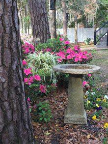 23rd Annual Garden-A-Day