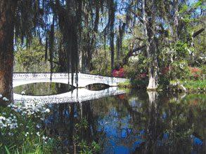 Charleston Magnolia Plantation Bridge
