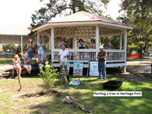 Lunch and Learn Tree Planting