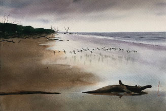Art Exhibit to Benefit Friends of Hunting Island