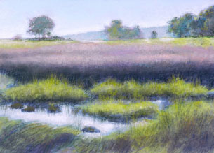 magic D Nagel Rainbow Marsh