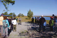 St Phillips Island JW Watches as Ranger Terry Conway Briefs the Tour