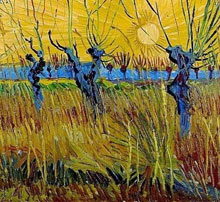 garden Pollard Trees by Vincent Van Gogh