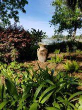 garden Barb Dave Farrior