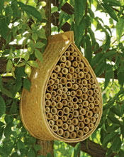 garden Mason Bee House