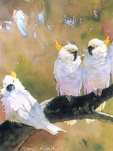 Free Watercolor Demonstration to Focus on Birds