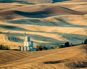 Photo Sandy Dimke Shades of the Palouse Expert 1 of 1