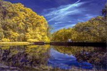 photographic autumn