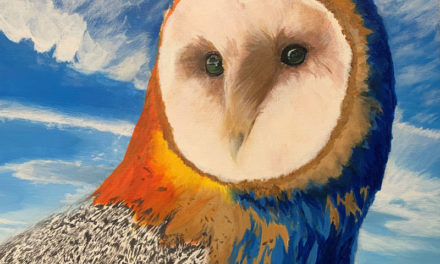 SoBA Teams up with Local Art Students