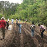 Community Garden 'Poised to Grow' at Penn Center