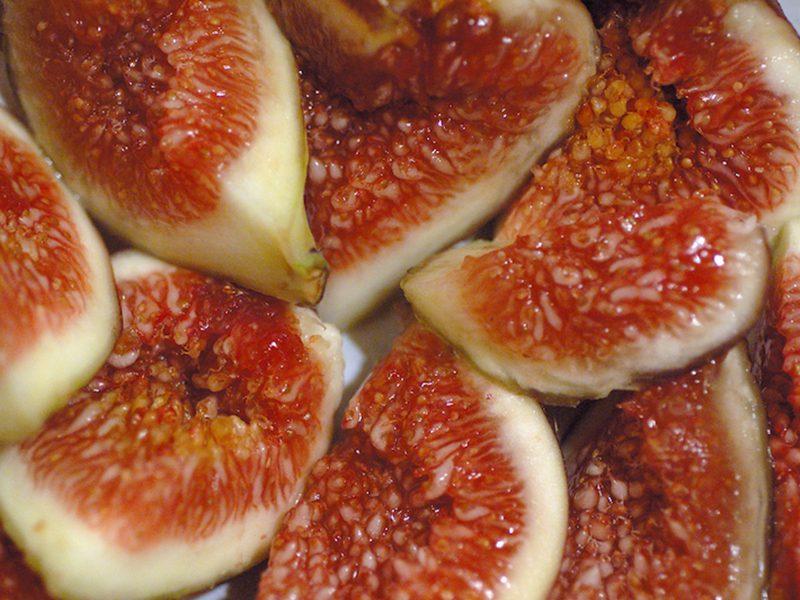 It's Fig Season!